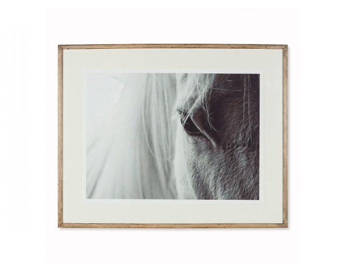 Tranh White Horse Anthro