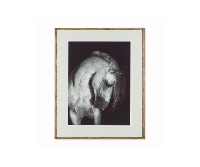 Tranh Grey Horse