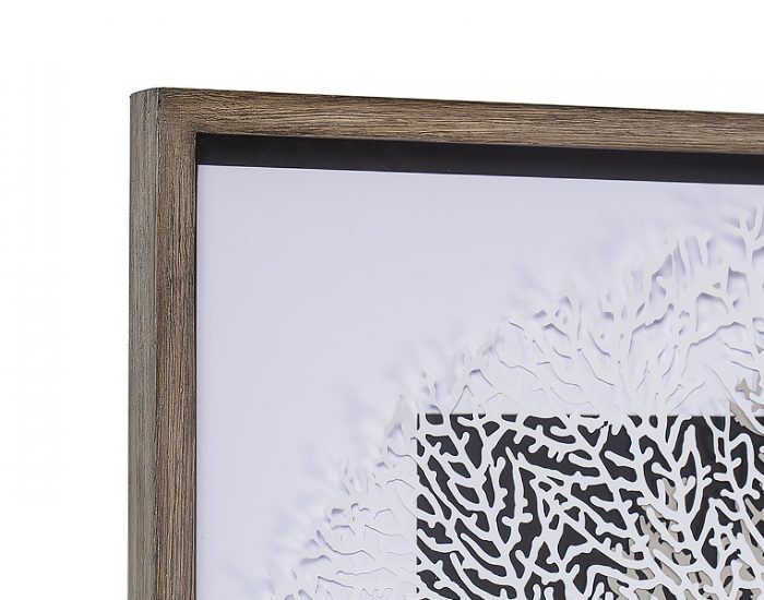 Tranh White & Grey Coral