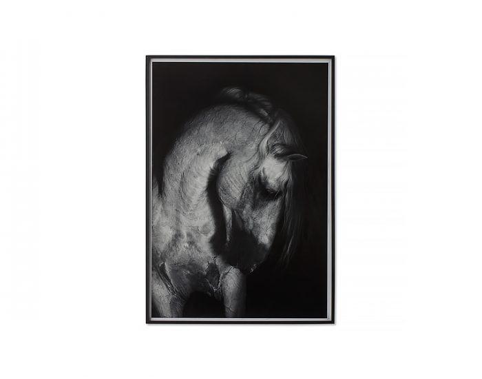 Tranh Grey Horse - Large